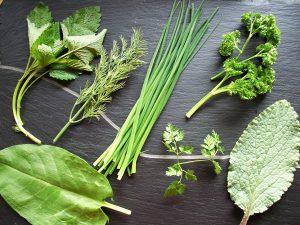 Foto Kräuter für die grüne Soße