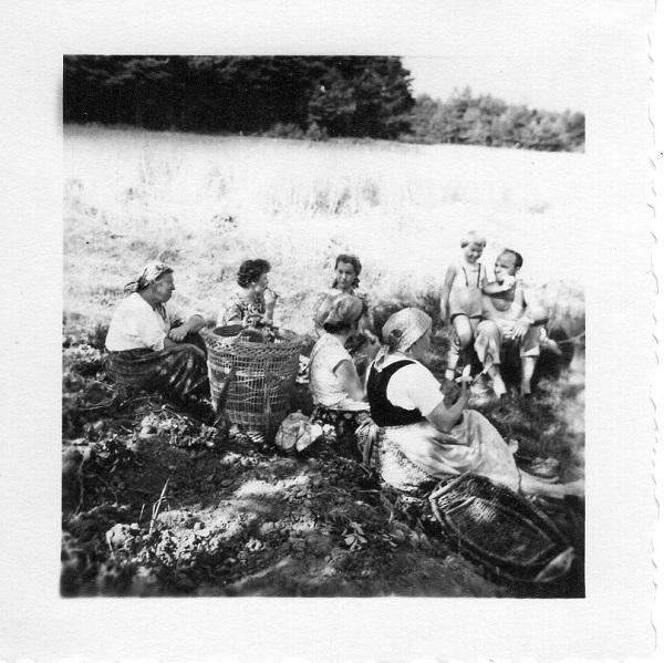 schwarz weiß Foto von 1958 Familie mit Tracht bei der Feldarbeit in Franken