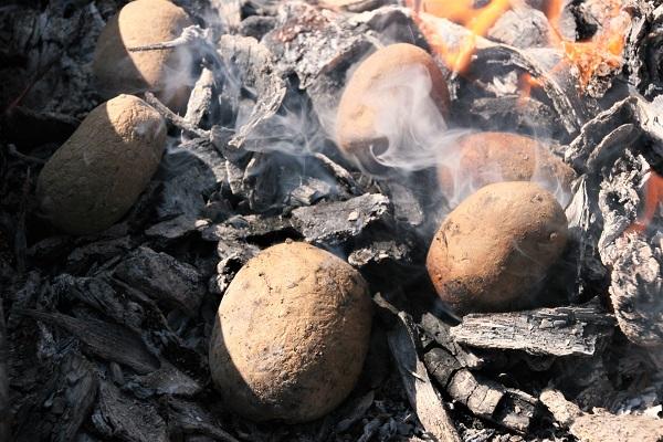 Kartoffeln im Holzfeuer